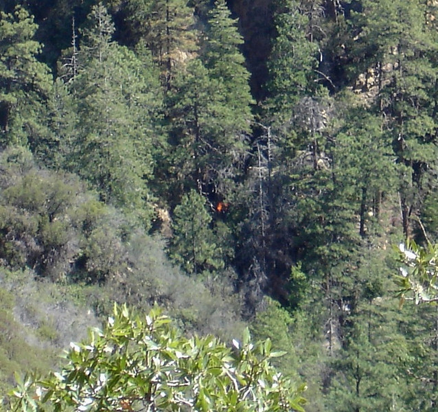 The fire eventually burned itself out and the USFS never investigated it further. It would be 2 1/2 years later that a group of private individuals would find the USFS file of the reported fire and connect it with the missing aircraft.