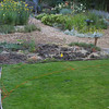 June 2012. Start of extended dry creek bed.