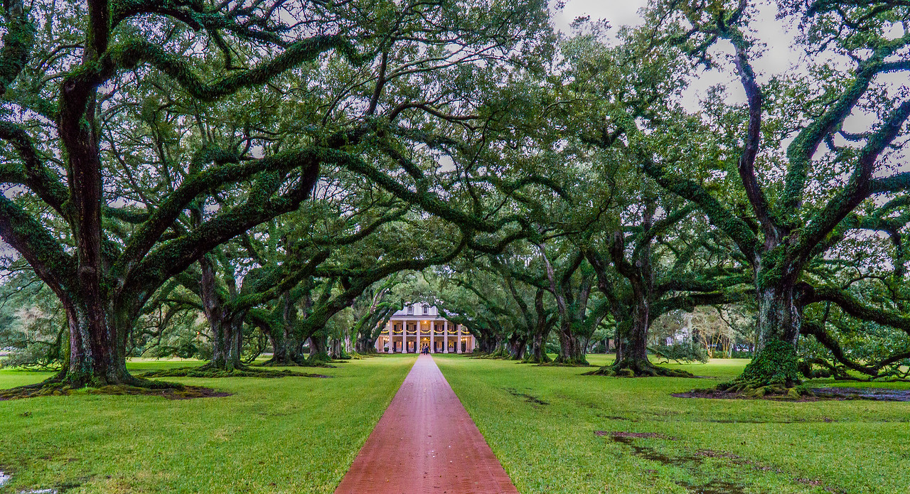 Oak Alley Plantation with its quarter mile tunnel of 28 oak trees that frame this plantation facing the Mississippi River. Built in 1839.