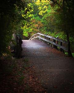 Bridge to Bird Island, Lake Fausse Point State Park, St. Martinville, LA.