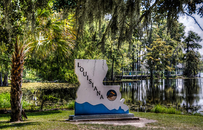 louisana-sign-swamp-5