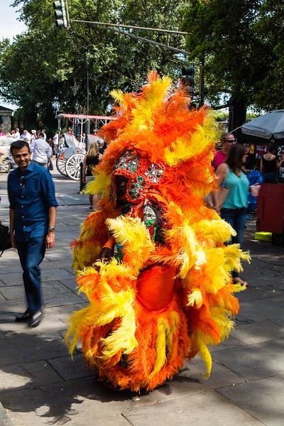 Elaborate Feathered Costume
