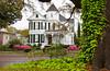Large antebellum homes with azalea shrubs in bloom in Natchez, Louisiana, USA.