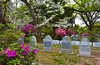 The cemetery at Our Lady of Mt. Carmel church in St. Francisville, Louisiana, USA, America.