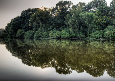 river-trees-reflection-3-2