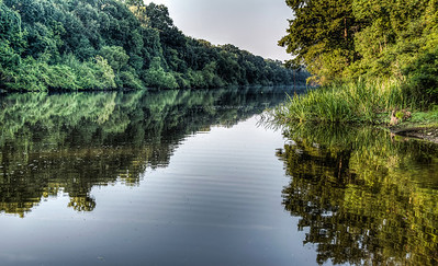 river-trees-reflection-2-1