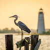 Heron and Lighthouse