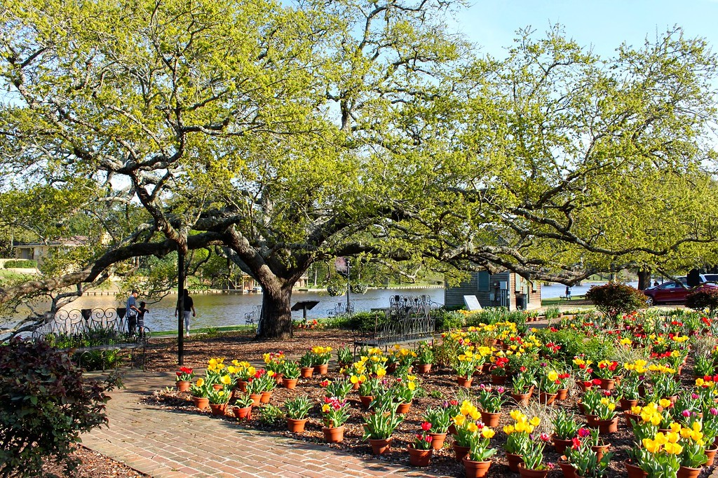 Natchitoches Riverfront