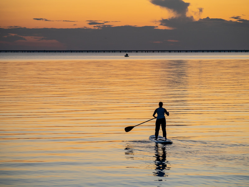 The Paddleboarder
