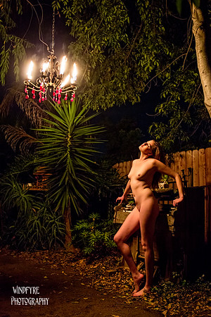 Lourie at the Fire Garden