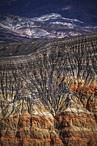 Crater Rim Death Valley 1