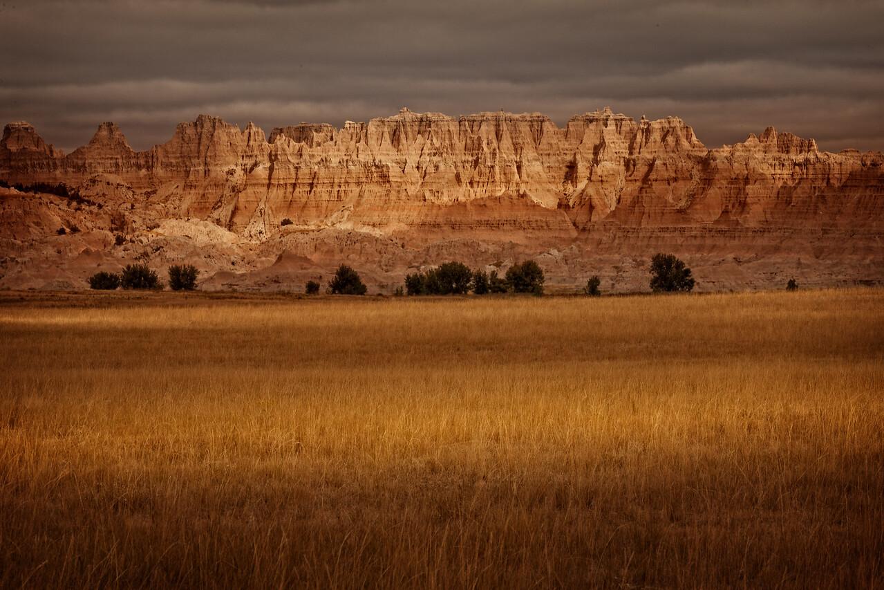 Badland Golden Field