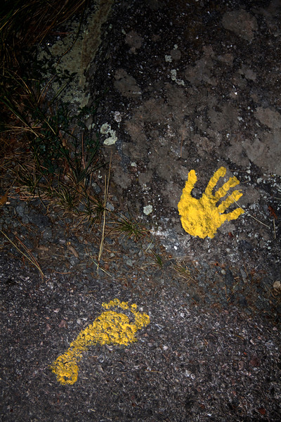 Foot and Hand Print in Yellow.jpg