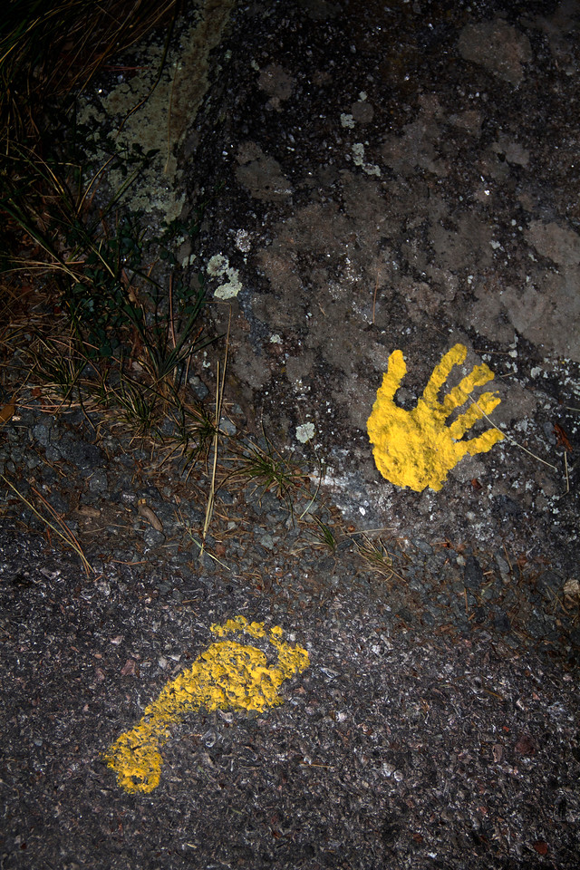 Foot and Hand Print in Yellow