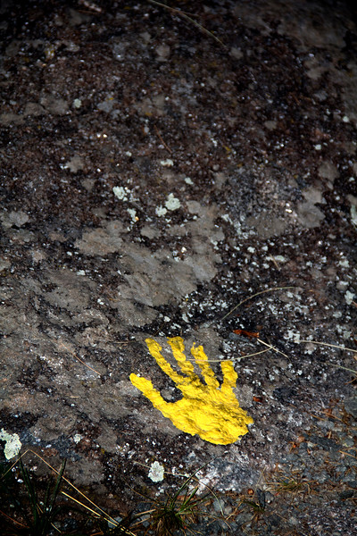 Yellow Hand Print.jpg