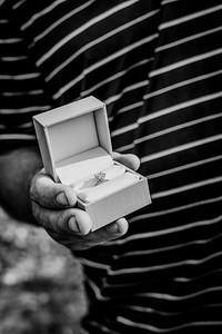 00004--©ADHphotography2018--AshleyHaganJasonCooper--Proposal--July04