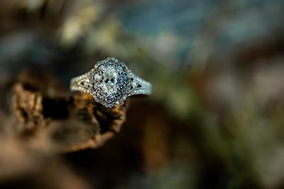 00005-©ADHPhotography2019--SARAHALEX--Engagement--September14