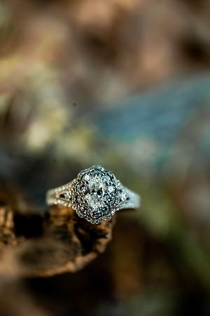 00007-©ADHPhotography2019--SARAHALEX--Engagement--September14