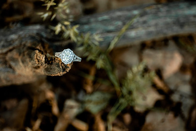 00009-©ADHPhotography2019--SARAHALEX--Engagement--September14