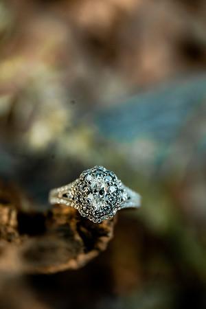 00006-©ADHPhotography2019--SARAHALEX--Engagement--September14