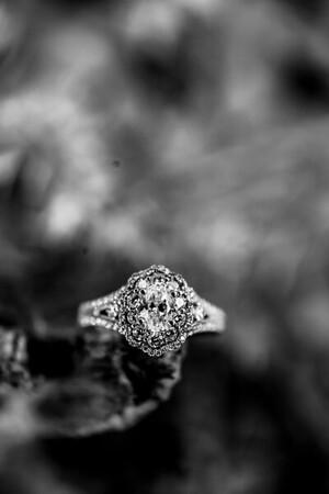 00006-©ADHPhotography2019--SARAHALEX--Engagement--September14bw