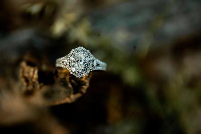 00003-©ADHPhotography2019--SARAHALEX--Engagement--September14