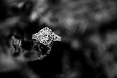 00004-©ADHPhotography2019--SARAHALEX--Engagement--September14bw