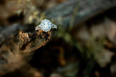 00002-©ADHPhotography2019--SARAHALEX--Engagement--September14