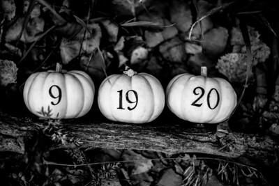 00010-©ADHPhotography2019--SARAHALEX--Engagement--September14bw