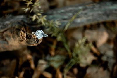 00008-©ADHPhotography2019--SARAHALEX--Engagement--September14