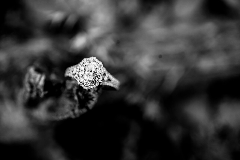00001-©ADHPhotography2019--SARAHALEX--Engagement--September14bw