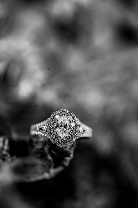 00007-©ADHPhotography2019--SARAHALEX--Engagement--September14bw