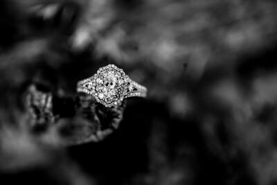 00003-©ADHPhotography2019--SARAHALEX--Engagement--September14bw