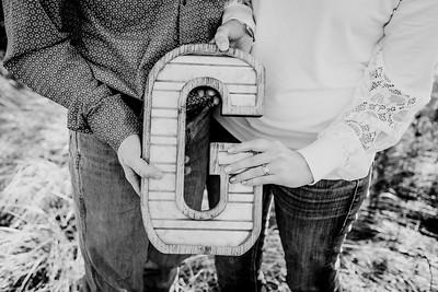 00010--©ADHphotography2018--VictoriaJohnsonHanceGrunden--Engagement--October16