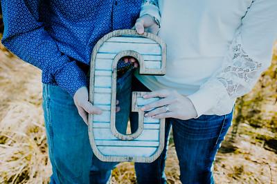 00011--©ADHphotography2018--VictoriaJohnsonHanceGrunden--Engagement--October16