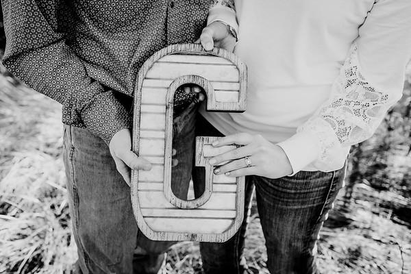 00012--©ADHphotography2018--VictoriaJohnsonHanceGrunden--Engagement--October16