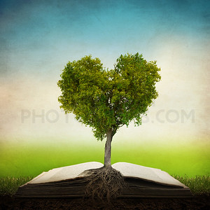 Heart tree on Bible
