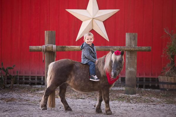 Boys at Horse Power Ranch