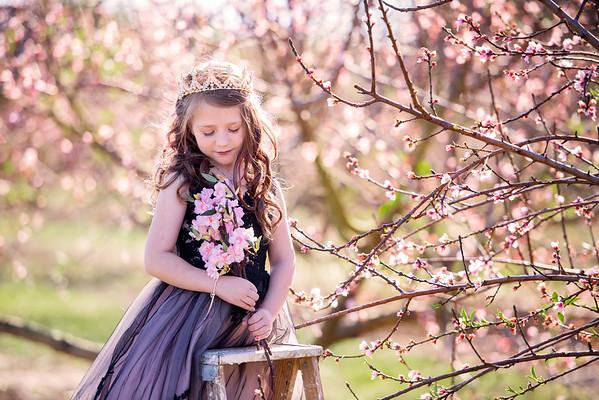 Peach blossoms feb 2020 - tiffany lynn