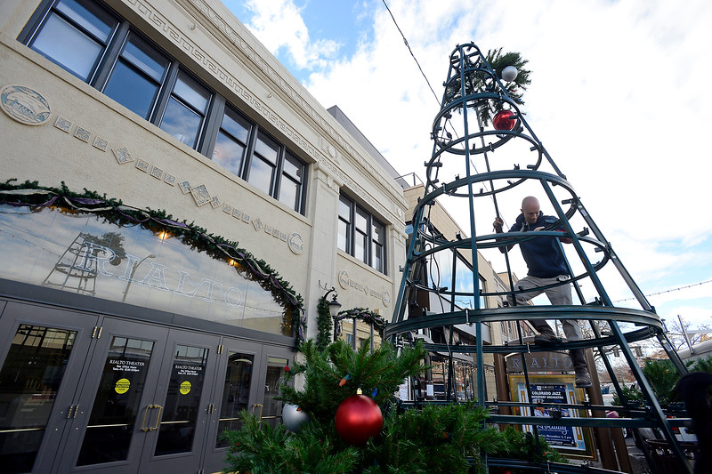 Austin Norris with Blazen Illuminations stands on the frame of an artificial Christmas tree as he works with a crew to build the 24 foot tall tree Monday, Nov. 21, 2016, in front of the Rialto Theater on Fourth Street in downtown Loveland. The tree will be lit during the Festival of Lights on Nov. 30 at 6 pm.  (Photo by Jenny Sparks/Loveland Reporter-Herald)