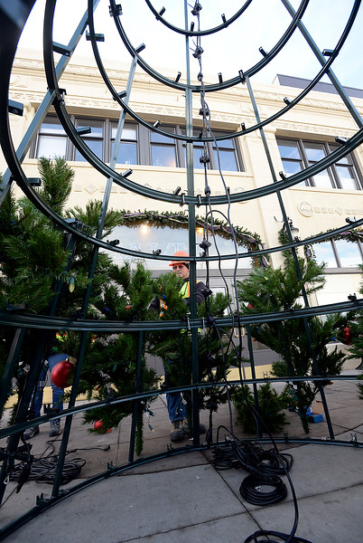 Robin Bashor with Blazen Illuminations works with a crew to build a 24 foot tall Christmas Tree Monday, Nov. 21, 2016, in front of the Rialto Theater on Fourth Street in downtown Loveland. The tree will be lit during the Festival of Lights on Nov. 30 at 6 pm.  (Photo by Jenny Sparks/Loveland Reporter-Herald)