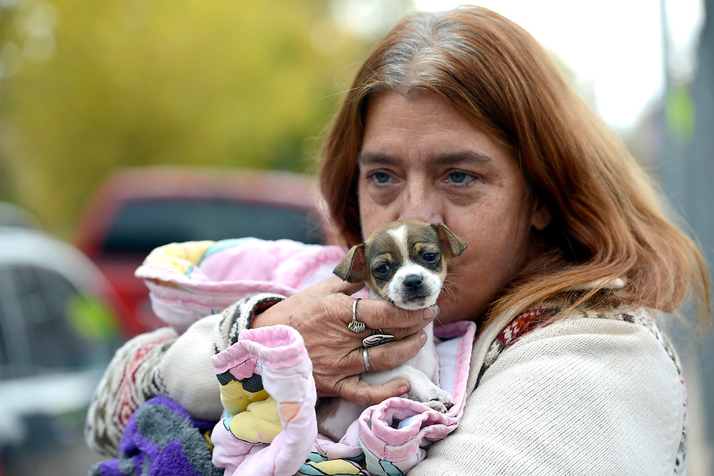 Margie Scott holds her six week-old puppy, Arrow, Friday, Oct. 14, 2016, while checking out services available for pets during the Loveland Connect event at Truscott Elementary School in downtown Loveland.  Loveland Connect is a one-stop shop of services for homeless and near homeless Loveland residents to learn what's available to help them out with things like housing, food and clothing.   (Photo by Jenny Sparks/Loveland Reporter-Herald)
