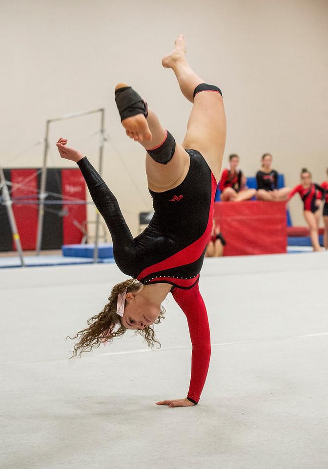 1014 SPO LHSGymnasticsvsTVHS_1-mb