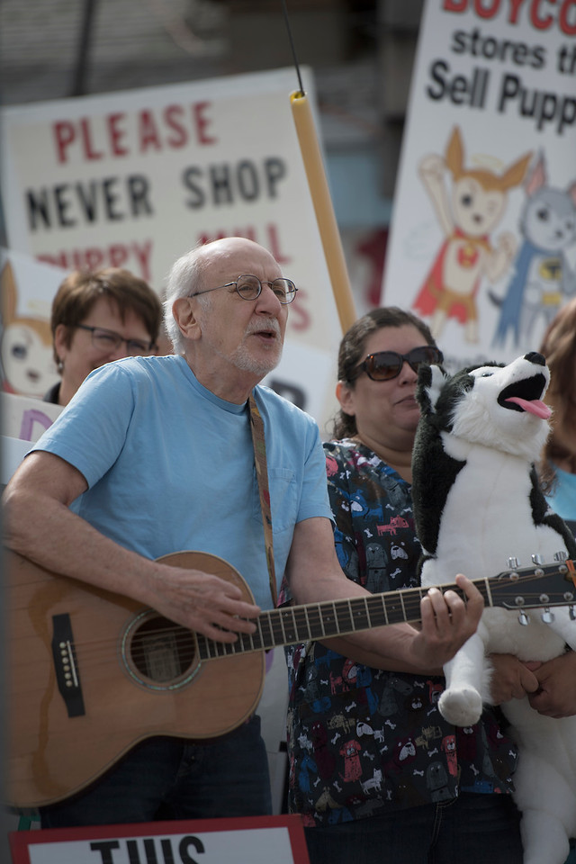 Peter Yarrow leads the crowd of protesters in song on Saturday, March 25, 2017 in front of a local pet shop in downtown Loveland near the corner of Cleveland and 1st St.