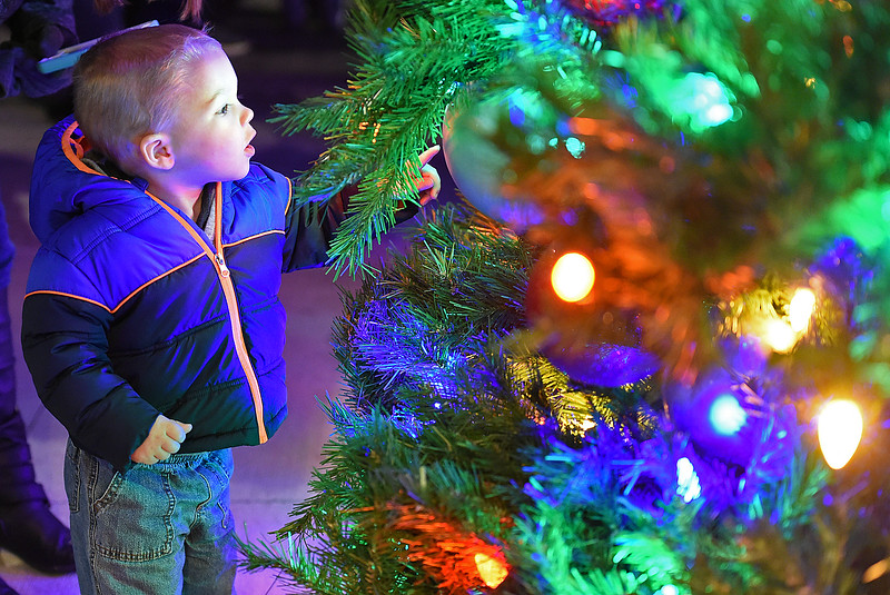 Jax Myers of Loveland, 22 months, gets a closer look at the Christmas tree Wednesday, Nov. 29, 2017, moments after it was lit during the Festival of Lights in downtown Loveland.    (Photo by Jenny Sparks/Loveland Reporter-Herald)