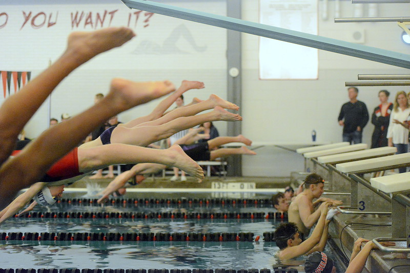 Swimmers come off the blocks at the start of the 50-yard freestyle during Tuesday's dual between Loveland and Fort Collins at the LHS pool. (Mike Brohard/Reporter-Herald).