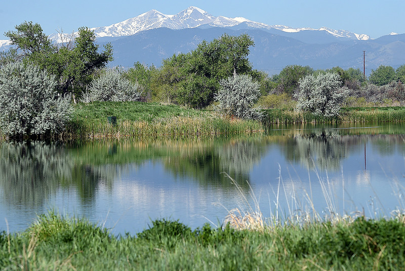 A view of a pond and the twin sisters is one of many seen Friday, May 12, 2017, at the city's new open space on east First Street near New Vision Elementary School in Loveland.  (Photo by Jenny Sparks/Loveland Reporter-Herald)