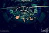 audiofly-3085