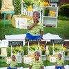 Lovelle Lemonade Stand Collage 3