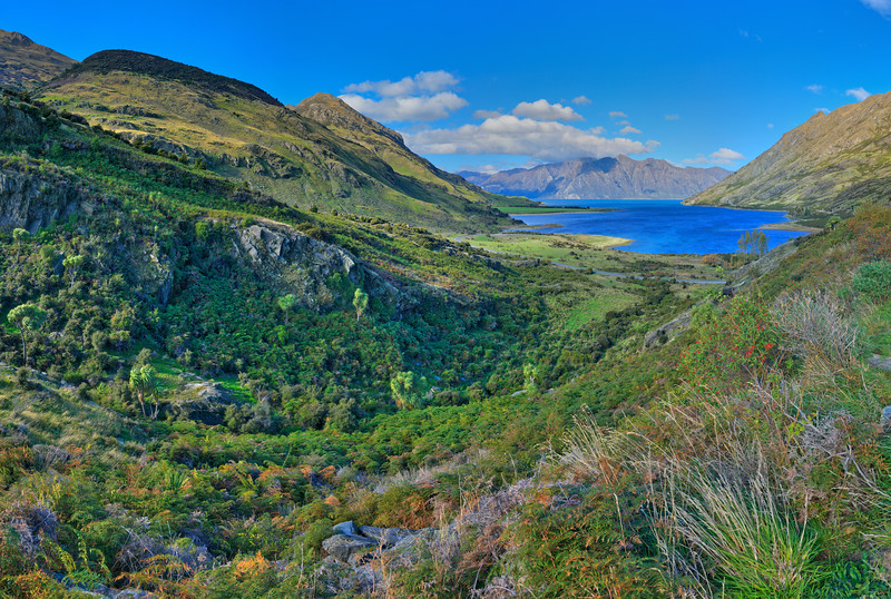 Lake Hawea Vista #3